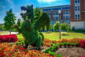10 of the Easiest Courses at UAB