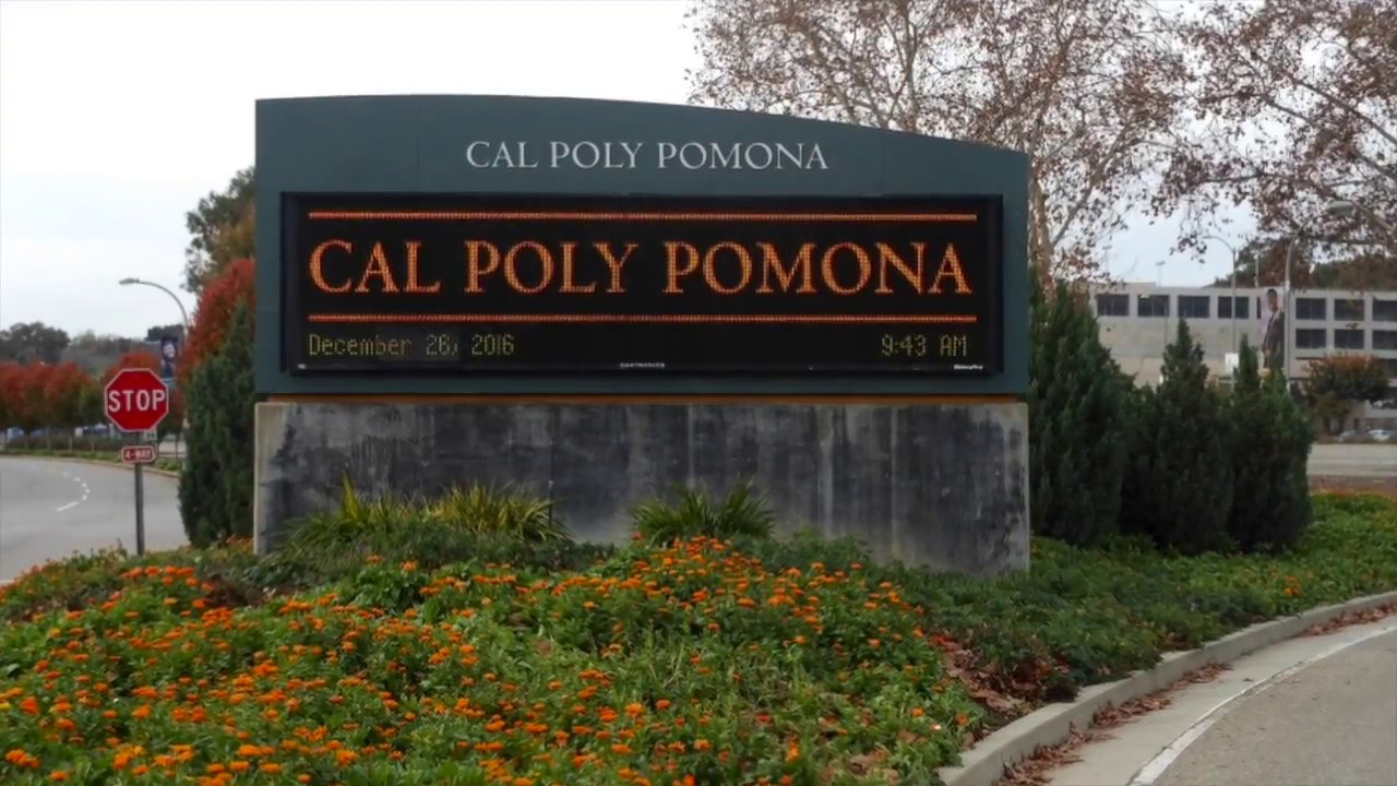 Teen ass cal poly pomona hook up page