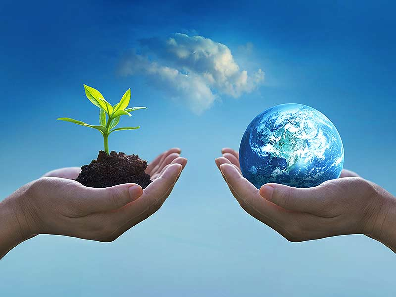 Environment represented by hands holding earth and dirt and a plant growing
