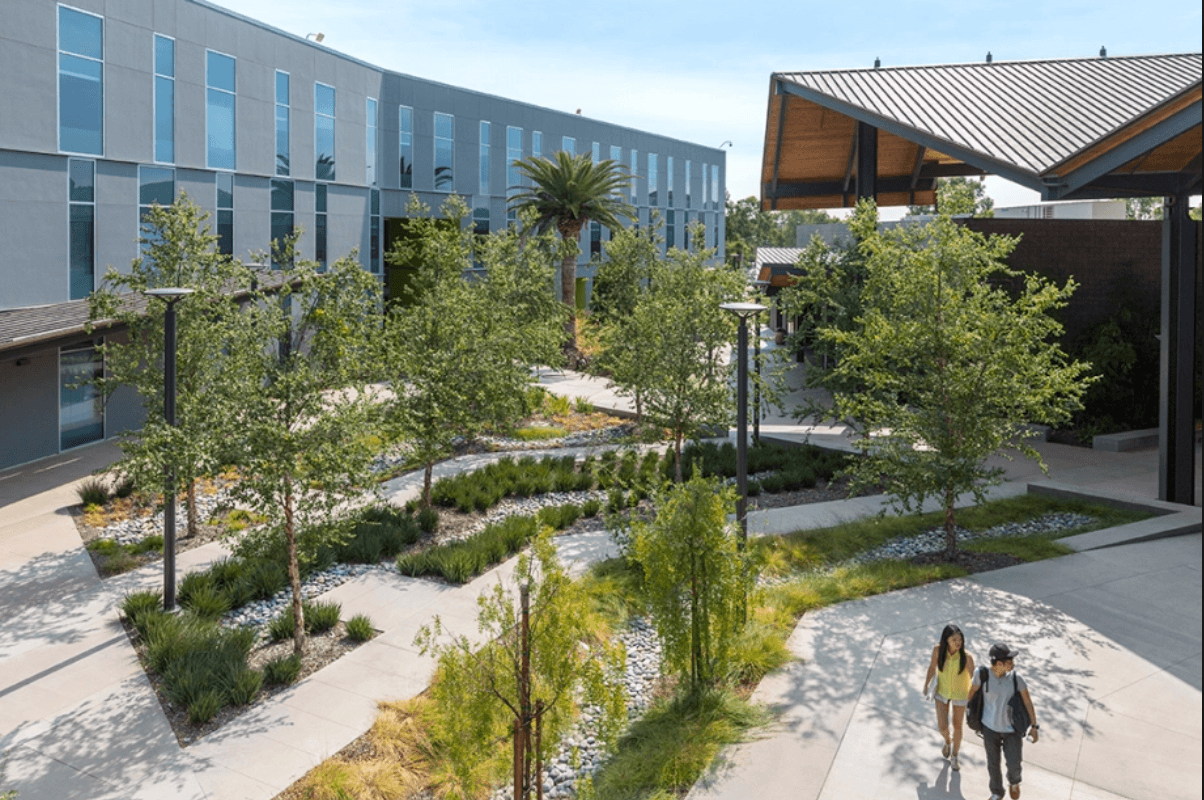 10 of the Easiest Classes at Cal Poly Ponoma