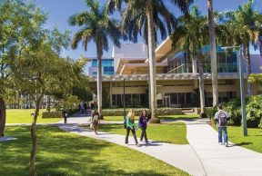 10 of the Easiest Classes at UMiami