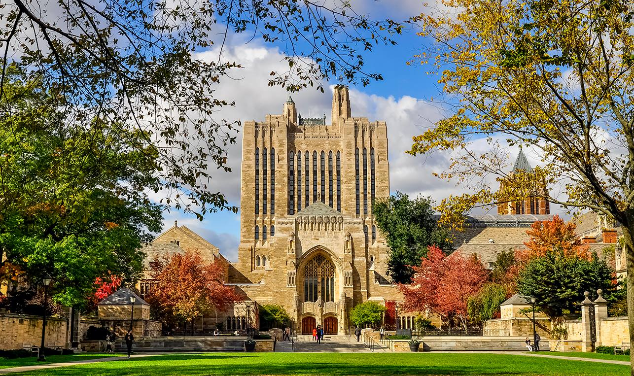 10 of the Easiest Classes at Yale University