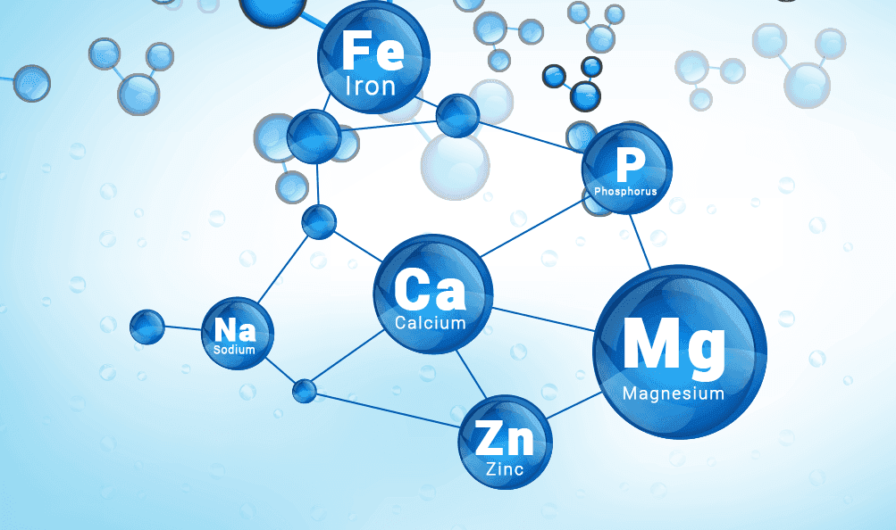 Different chemical elements connected in a network