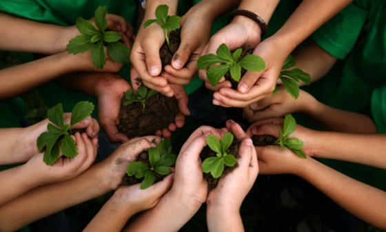 Students holding plants for the image.