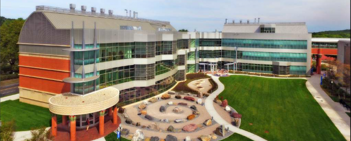 10 of the Easiest Courses at SCSU