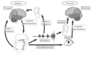 This image shows the science of speech between speaker and perceiver