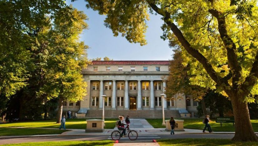 10 of the Easiest Classes at CSU