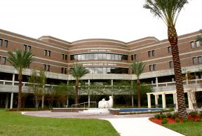 10 of the Easiest Classes at UNF