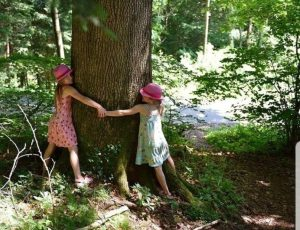 An image of girls hugging a tree.