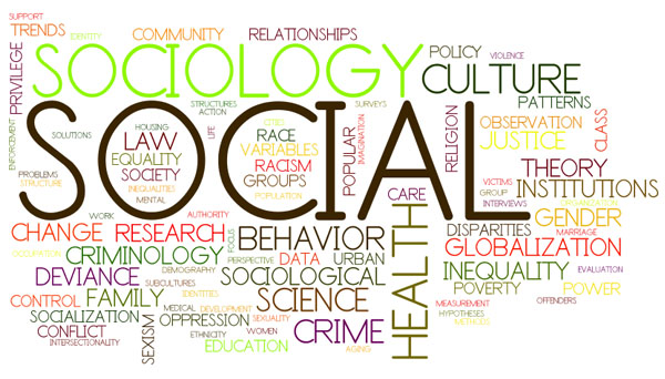 Words that relate to the word sociology.