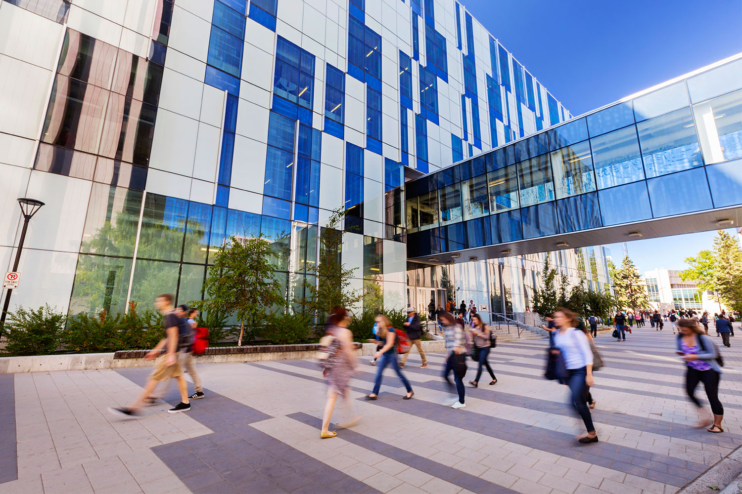 10 Easiest Courses at the U of C