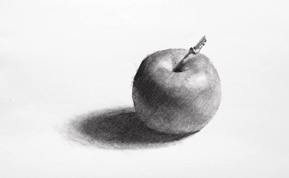 This is a sketch of an apple.