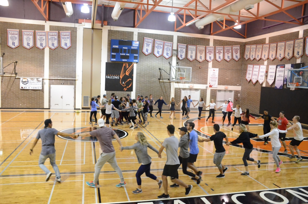 Picture of a gymnasium with people engaged in a leisure activity