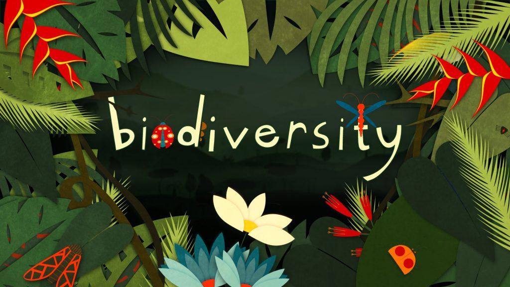 Illustration of the word biodiversity.
