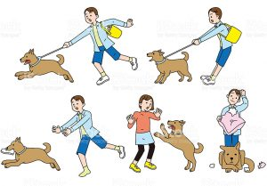 Dogs have many characteristics and behaviors like humans, the picture above shows many of the ways dogs act. Scared, calm, mischievous, and alert.