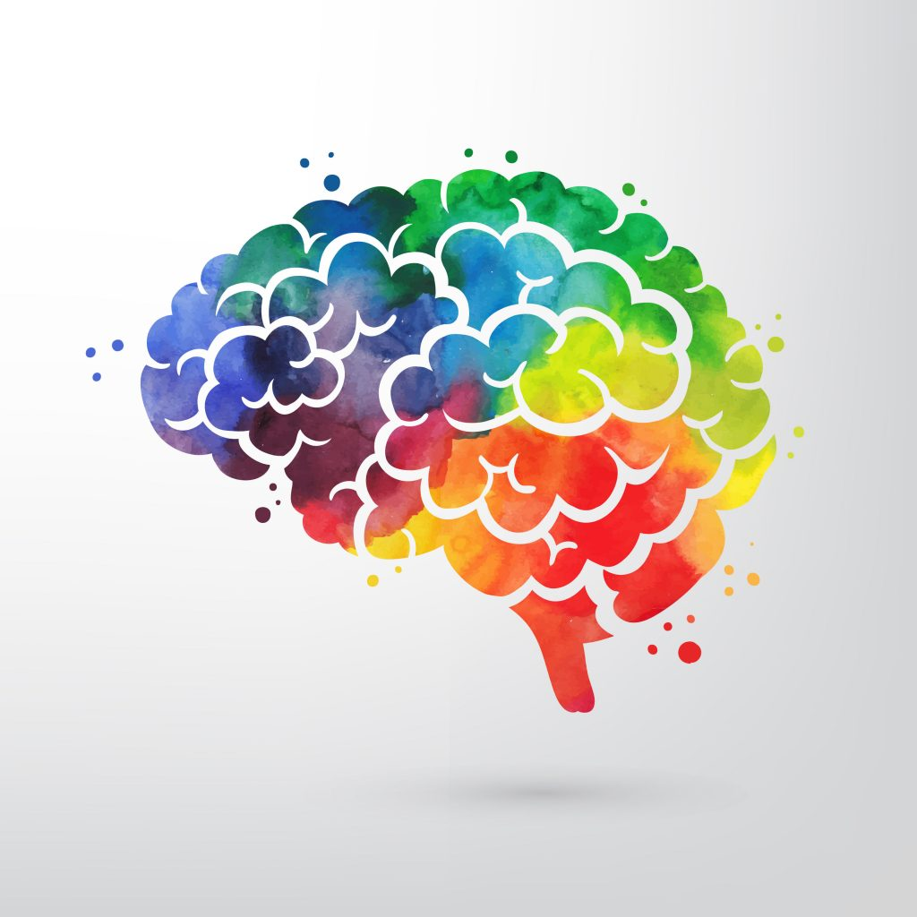 A color graphic of a brain.