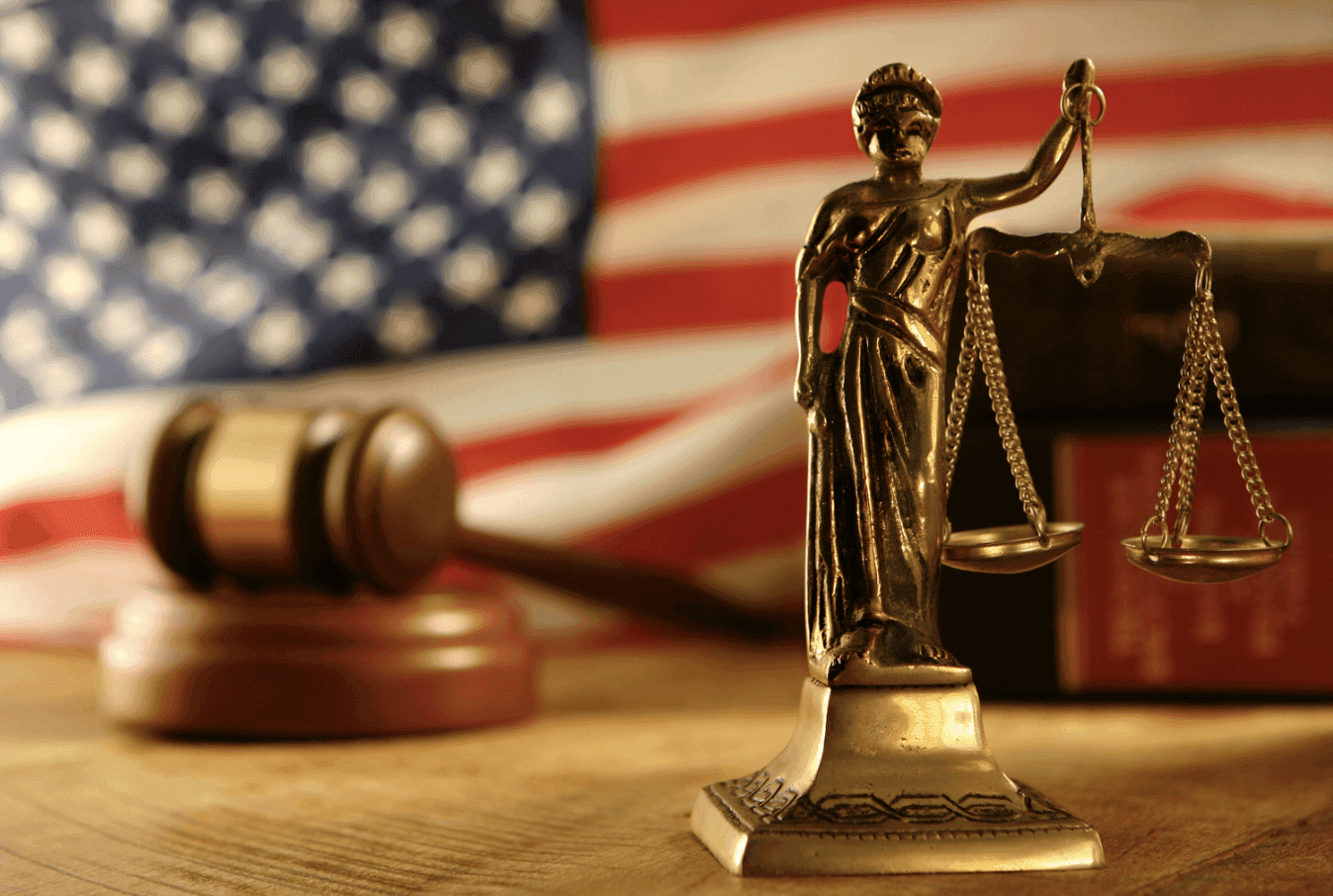 The U.S. Legal System involves the judiciary branch, which deals with judges and courts