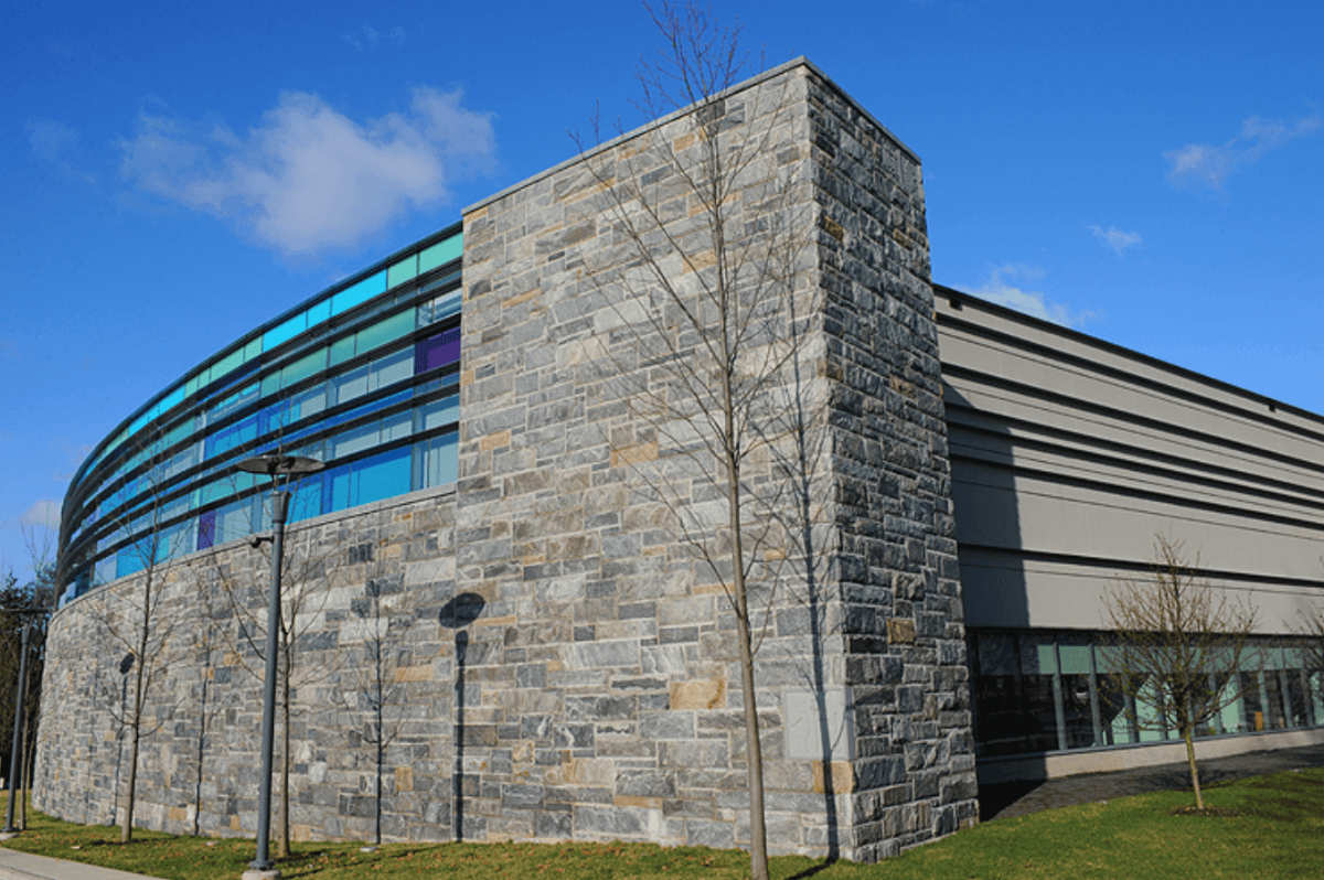10 Easiest Courses at the College of New Rochelle