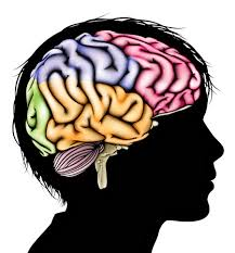 A colorful brain pasted on a silhouette