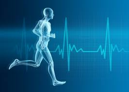 Human exercising on heart rate background