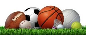 An image of the many different balls used in fall sports
