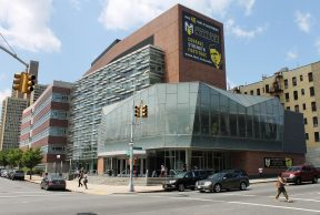 10 of the Easiest Courses at CUNY-Medgar Evers