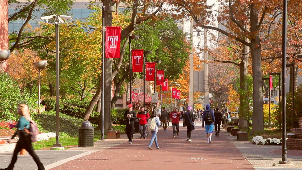 Top 10 Professors at Temple University - OneClass Blog