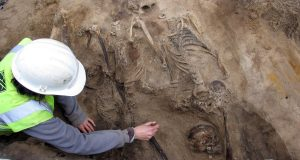 A person digging up a fossil
