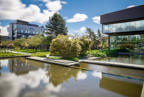 Top 10 Professors at Langara College