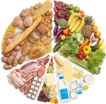 the food groups including grains, fruits and vegetables, meats and dairy