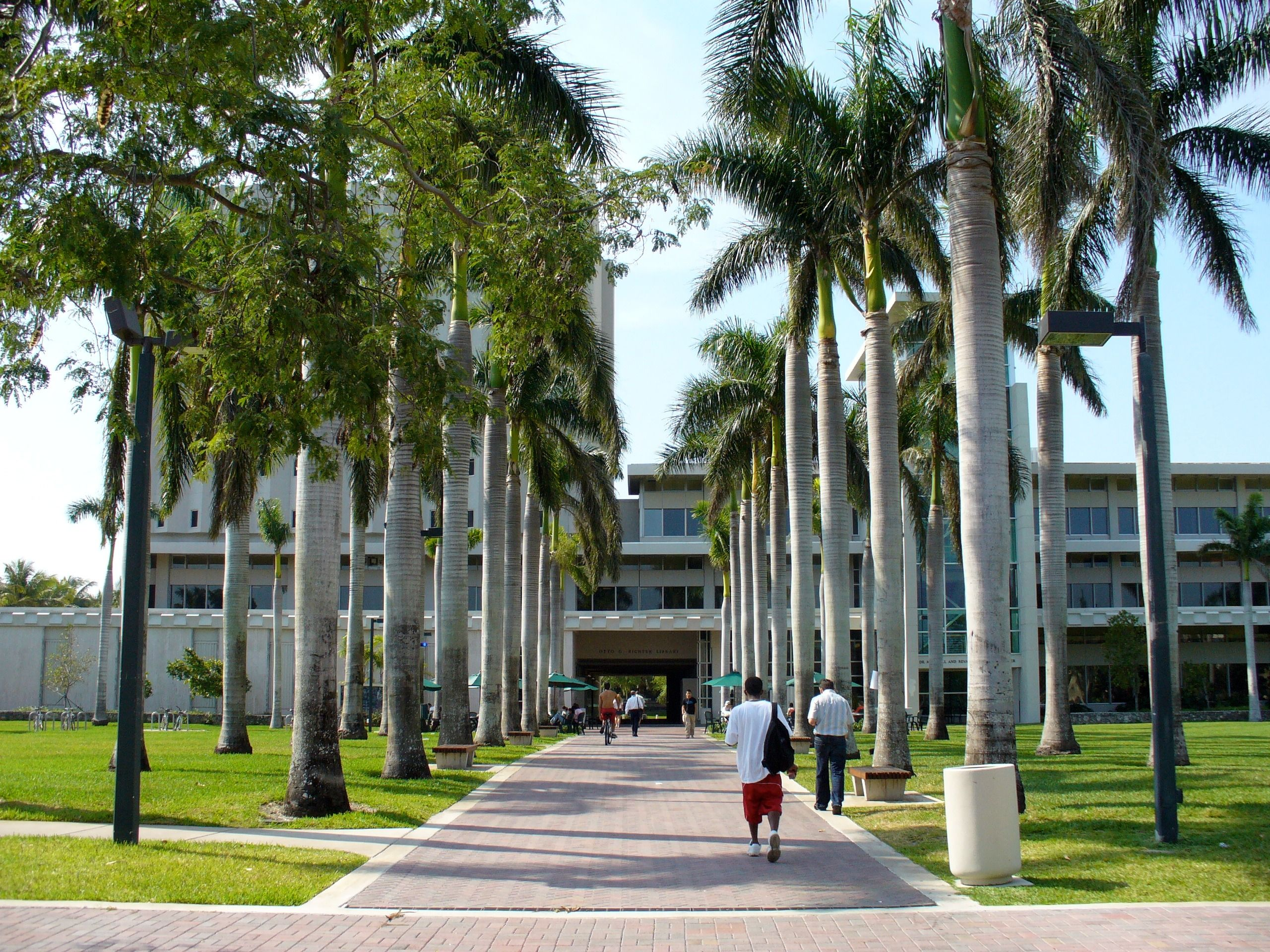 Top 5 Dorms at the University of Miami