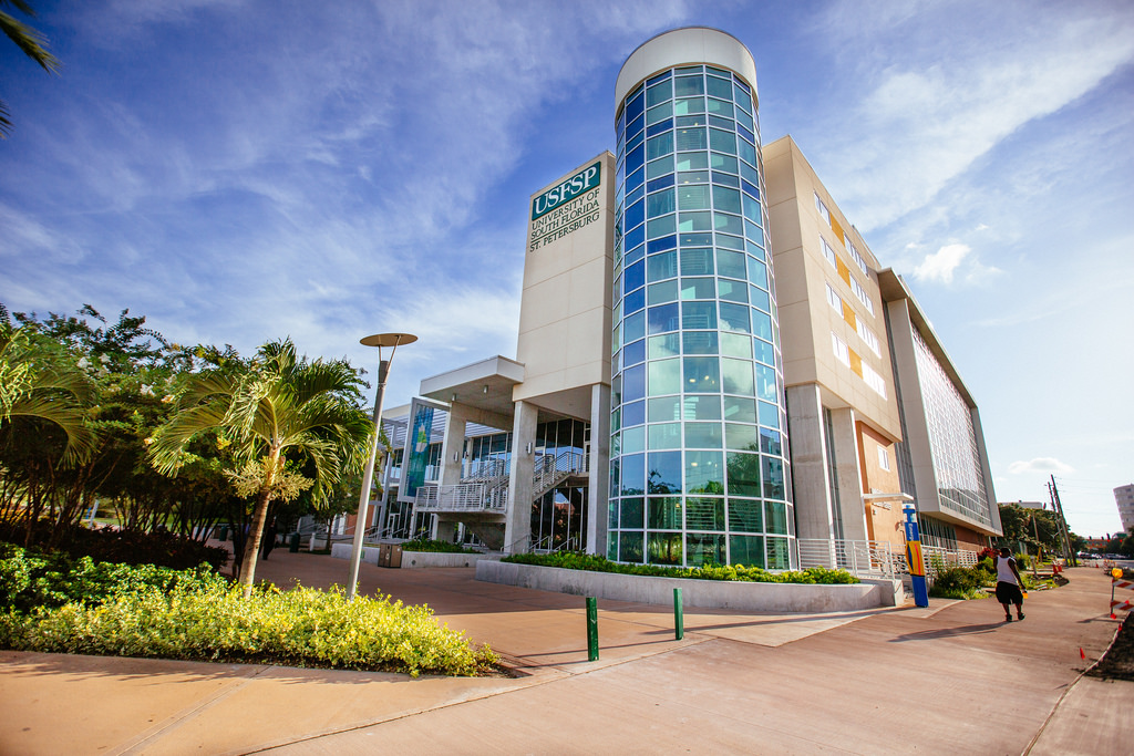 10 University of South Florida Library Resources