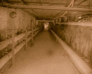 1704 Old Tunnel medium