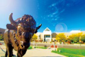Top 10 Dorms at University at Buffalo