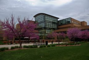 10 Easiest Courses at Saginaw Valley State University