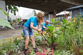 A girl volunteering at a garden during her spring break.
