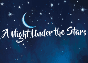 An image that says a night under the stars.