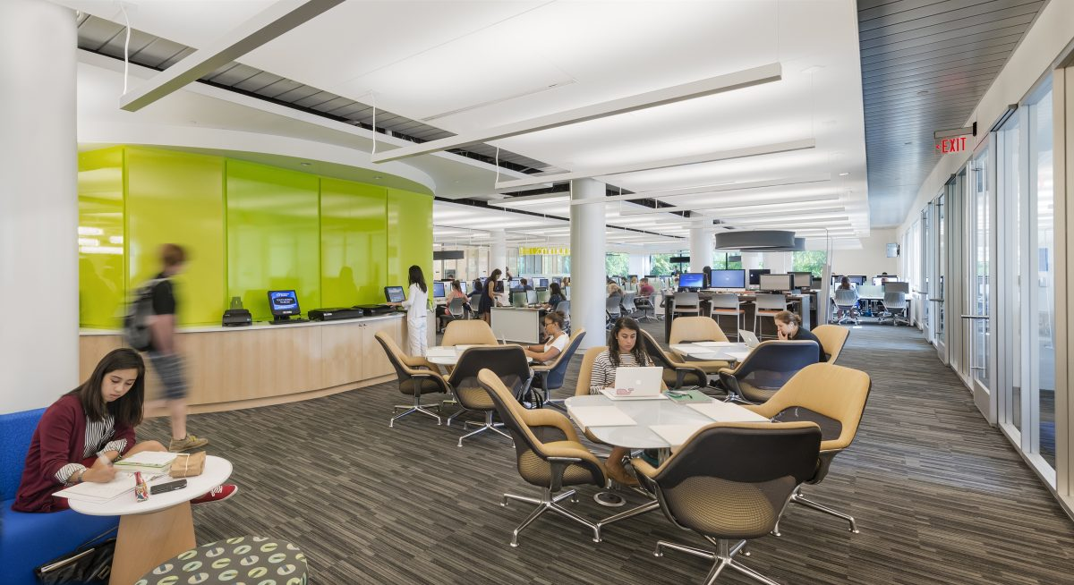 10 Northeastern University Library Resources You Need to Know