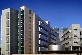Top 10 Professors at the University of Queensland