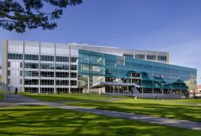Top 10 Clubs at San Francisco State University