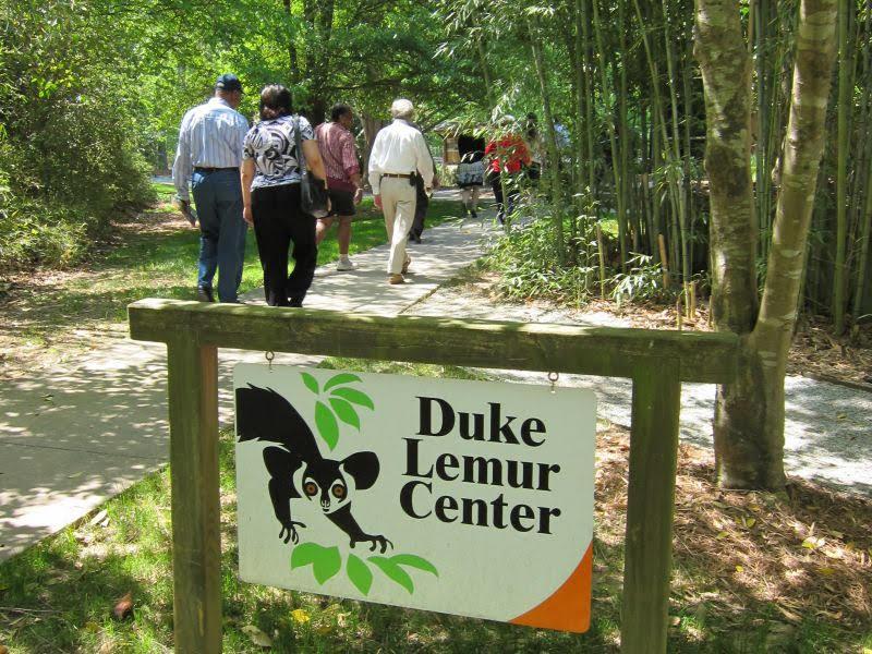 The Duke Lemur Center