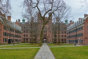 10 Yale University Buildings You Need to Know