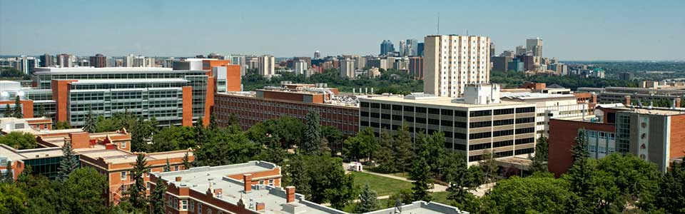The Top 10 Clubs at University of Alberta