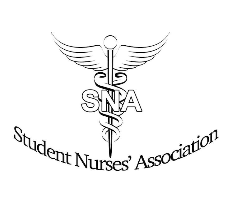 This is the official insignia of the SNA.