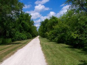 A trail in Kenosha County, the country where Carthage College is located