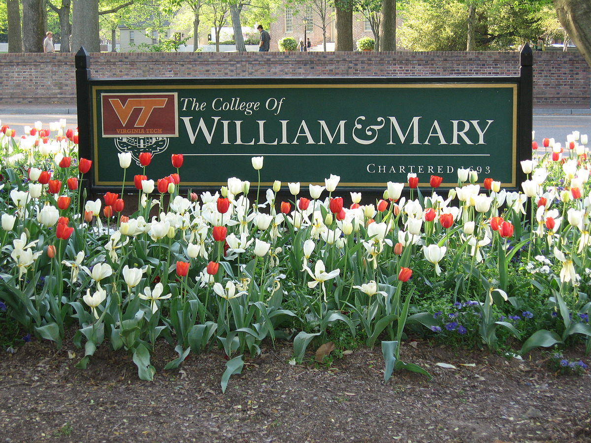 10 W&M Library Resources You Need to Know