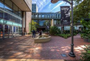 Top 10 Residences at Long Island University