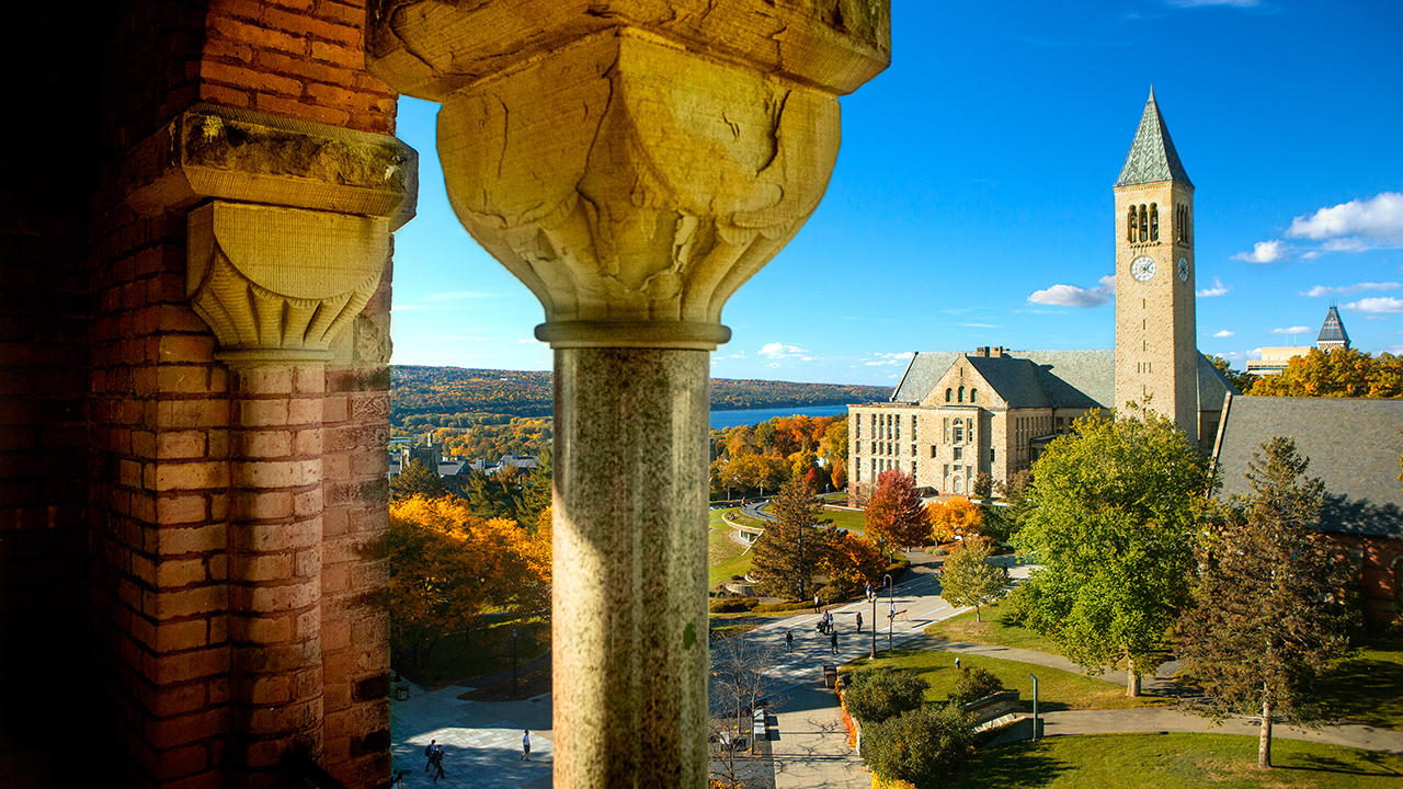 10 cornell library resources you need to know oneclass blog
