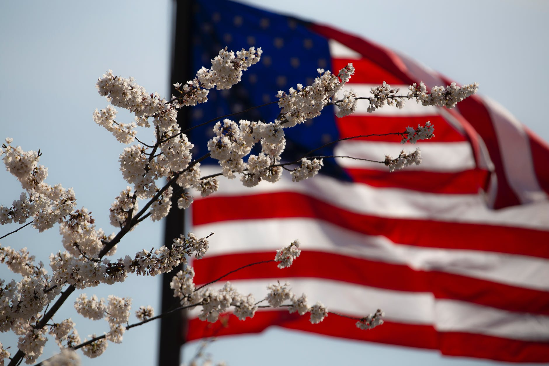 American flag behind flowers