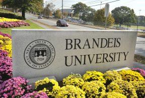 Top 10 Majors at Brandeis University